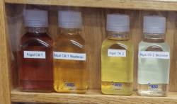 Two diverse samples of crude algal oil that were obtained from Solazyme, Inc.