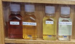 Algal Oil