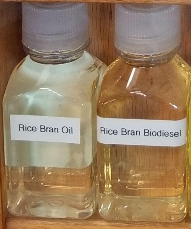 Rice Bran Oil - Feedstock and Bio-Diesel